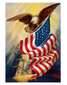 flag and eagle 2