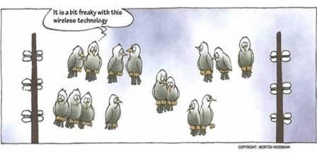 Cartoon - Birds on wireless lines